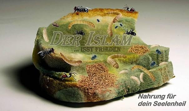 Islam bedeutet frieden