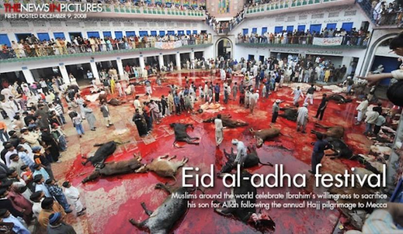 Muslim-Eid-al-adha-festival