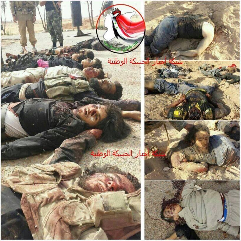 Nusra vs. ISIS